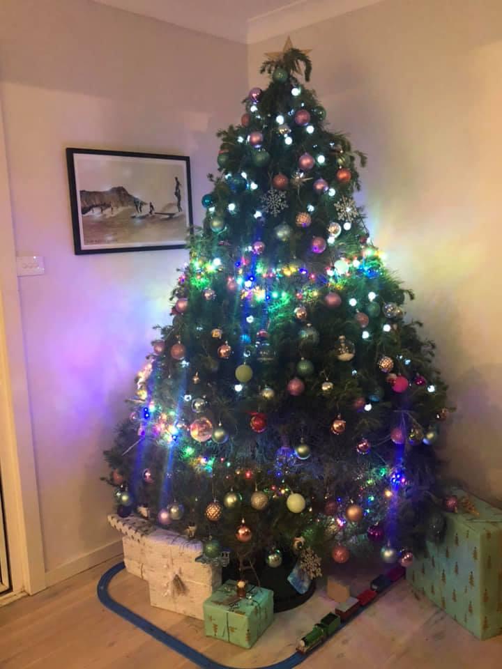 central coast Christmas trees in australia