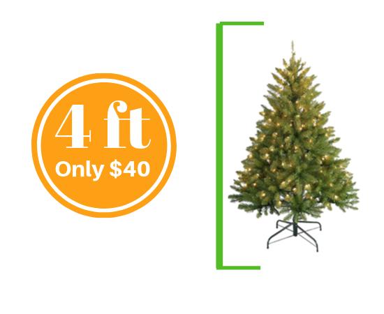 Central Coast Christmas Tree